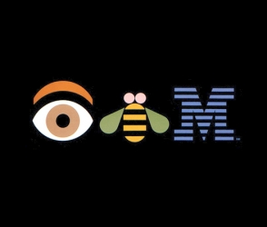 IBM – Business Insight in IT Industry